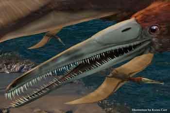 Aetodactylus_halli%5Bkc%5D-lorez.jpg
